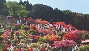 五大尊花木公園 (2)