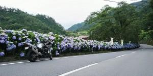 2017-08-03奥多摩~丹波山~相模湖~津久井湖ツーリングブログ (6)