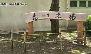 2018-07-01 花蓮祭り 毛呂山 (1)